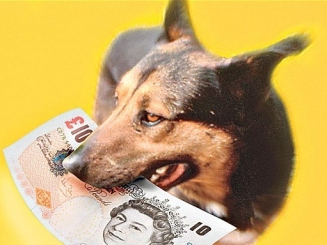 Dog-Money1_2634143b